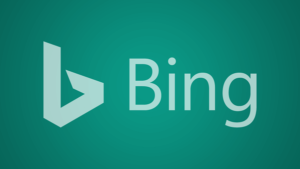 15th Nov 2020 Bing Local Ads 300x169 - ABOUT US